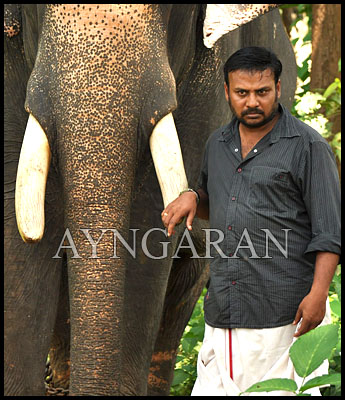 After Myna it is Kumki for Prabu
