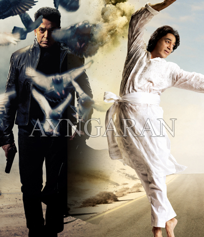 Vishwaroopam gets postponed
