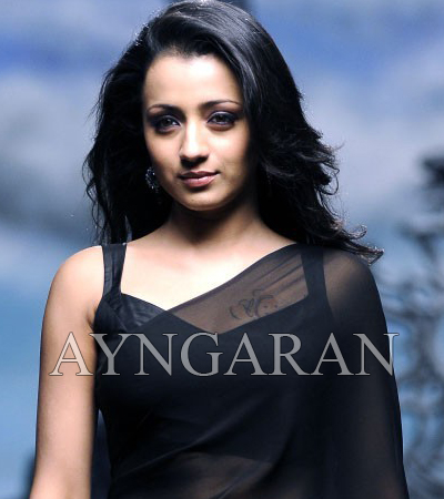 Trisha busy with stunts