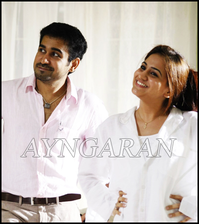 Vijay Antony decides to make Salim in 2 more languages